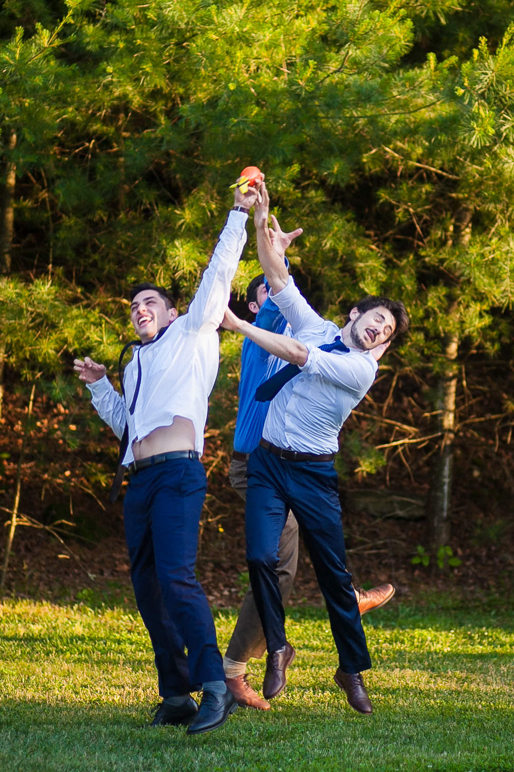 wedding lawn games at hartmans herb farm weddings,